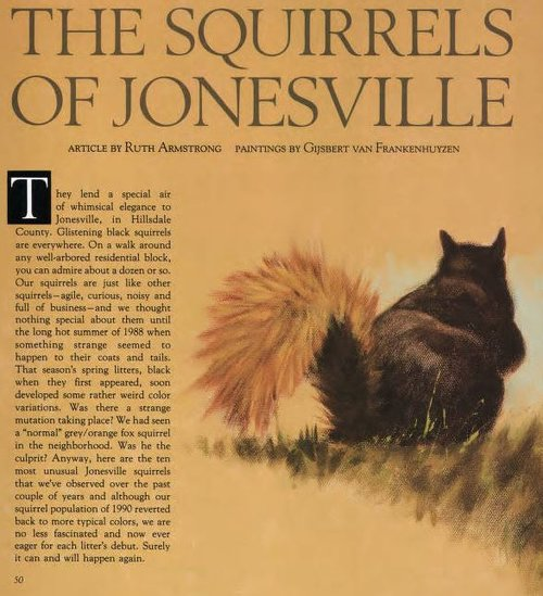 Jonesville Squirrels
